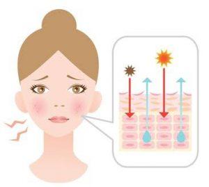 紫外線ダメージと肌の乾燥